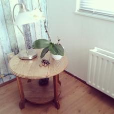 Lamp is van Ikea, denneappels en eikels uit het bos